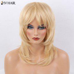 Siv Hair Medium Side Bang Tail Adduction Layered Straight Human Hair Wig