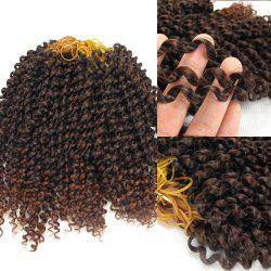 Afro Jerry Curl Shaggy Synthetic Hair Extension - GRADUAL BROWN