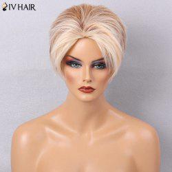 Siv Hair Messy Colormix Side Bang Straight Layered Short Human Hair