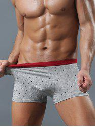 Contrast Waistband Allover Printed Boxer Briefs
