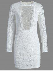 Fitted Long Sleeve Lace Mini Dress
