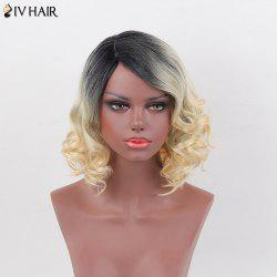 Siv Hair Side Part Short Curly Bob Human Hair Wig