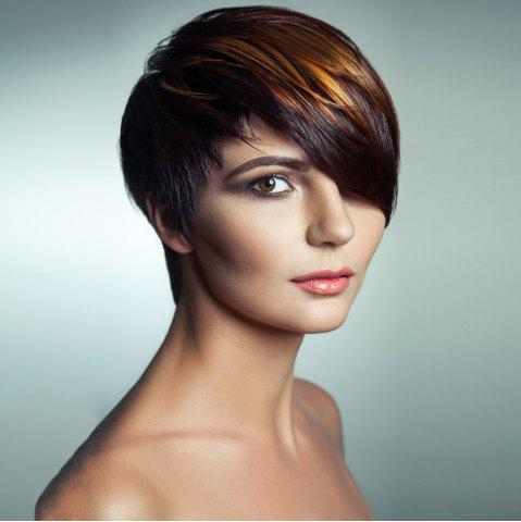Hot Dull Rayon Side Bang Short Straight Highlight Pixie Synthetic Wig COLORMIX