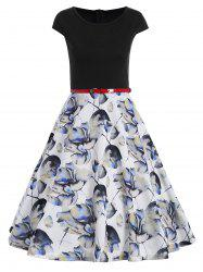 Printed Fit and Flare Dress -