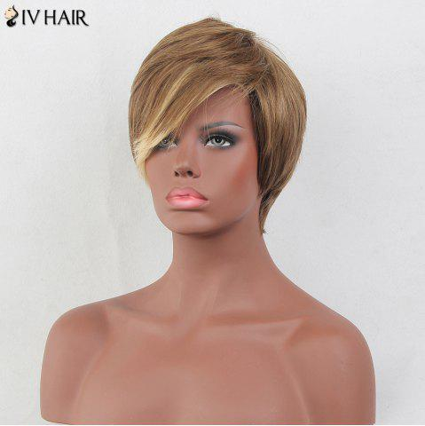 Buy Siv Hair Colormix Layered Short Oblique Bang Straight Human Hair Wig - COLORMIX  Mobile