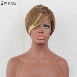 Siv Hair Colormix Layered Short Oblique Bang Straight Human Hair Wig