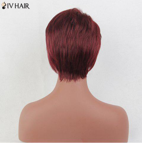 Online Siv Hair Short Layered Side Bang Straight Real Hair Wig - BURGUNDY  Mobile