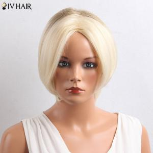 Siv Hair Colormix Short Middle Parting Straight Bob Human Hair Wig