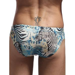 Zebra Graphic Drawstring Bikini Swimwear -
