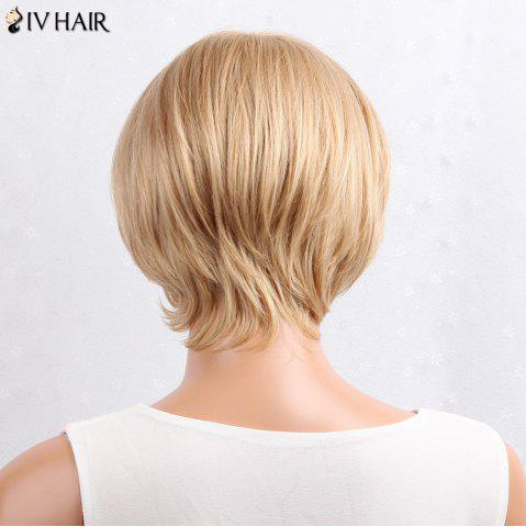 Trendy Siv Hair Layered Inclined Bang Short Straight Human Hair Wig - BROWN WITH BLONDE  Mobile