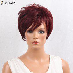 Siv Hair Layered Shaggy Side Bang Short Straight Human Hair Wig