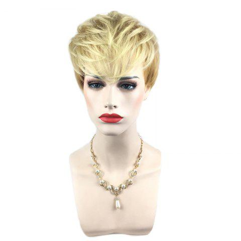 Unique Short Side Bang Silky Straight Colormix Pixie Synthetic Wig - COLORMIX  Mobile
