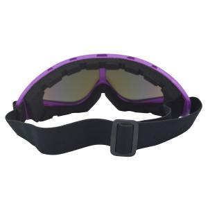 UV Protection Anti Fog Dustproof Riding Goggles - PURPLE