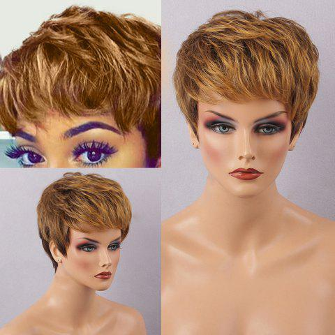 Unique Short Side Bang Layered Straight Colormix Human Hair Wig COLORMIX