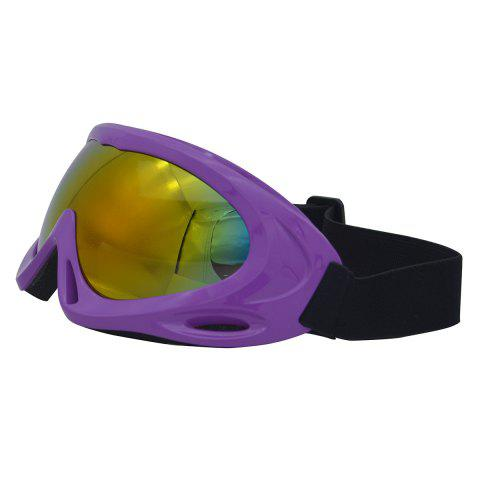 Store UV Protection Anti Fog Dustproof Riding Goggles - PURPLE  Mobile