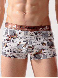Animal Print Quick Dry Swimming Trunks -