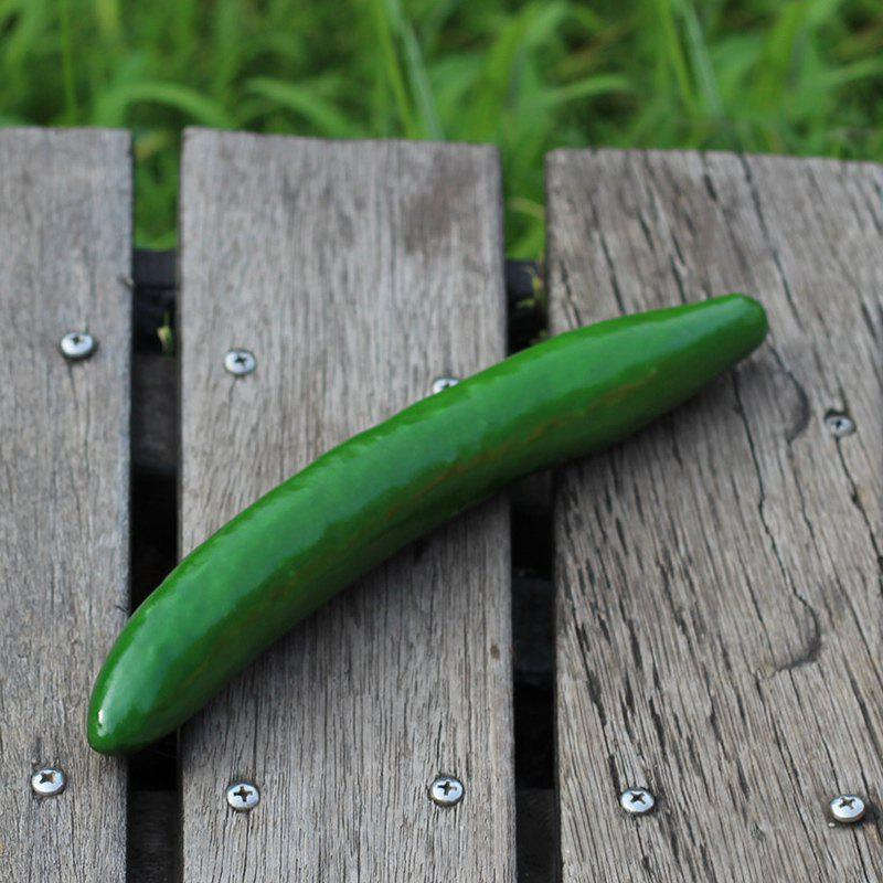Artificial Foam Vegetable Decorative Simulation CucumberHOME<br><br>Color: APPLE SLICE; Products Type: Simulation Cucumber; Materials: Foam; Features: Creative Toy; Use: Cabinet Decoration,Home Decoration,Photography Props; Shape/Pattern: Vegetable; Size(CM): Length:22cm; Weight: 0.0620kg; Package Contents: 1 x Simulation Cucumber;
