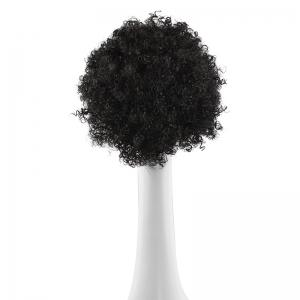 Shaggy Short Afro Curly Synthetic Wig - BLACK