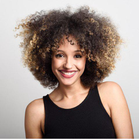Short Shaggy Side Bang Afro Kinky Curly Colormix Synthetic Wig - Colormix