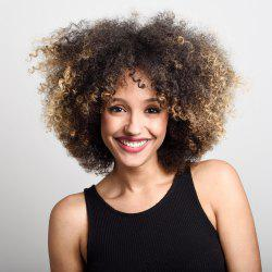Short Shaggy Side Bang Afro Kinky Curly Colormix Synthetic Wig
