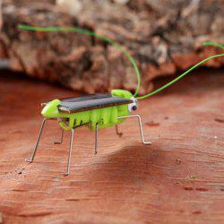 Solar Powered Grasshopper Educational Toy - GREEN