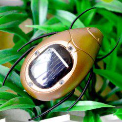 Educational Toy Solar Powered Beetle