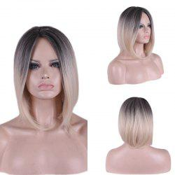 Short Middle Part Ombre Glossy Straight Synthetic Wig