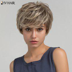 Siv Hair Short Side Bang Shaggy Layered Straight Colormix Human Hair Wig - COLORMIX