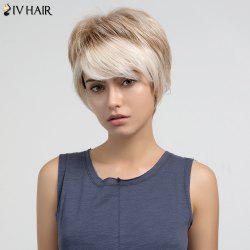 Short Side Bang Colormix Layered Straight Human Hair Wig