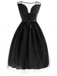 Vintage Mesh Panel Fit and Flare Dress