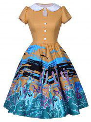 Collared Printed 1950 Dress
