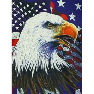 Short Sleeve 3D Eagle American Flag Print T-shirt -