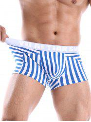 U Convex Pouch Panel Striped Trunks -