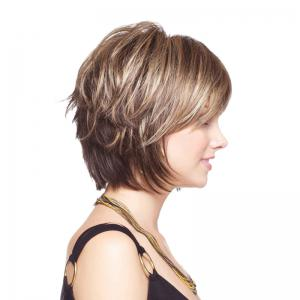 Short Shaggy Colormix Layered Straight Synthetic Wig -