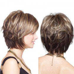 Short Shaggy Colormix Layered Straight Synthetic Wig - COLORMIX