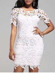 Cutwork Lace Pencil Dress with Cami Dress - WHITE
