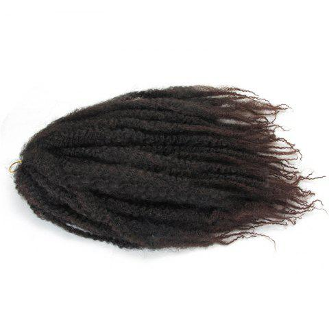 Chic Fluffy Long Afro Kinky Curly Colormix Synthetic Hair Weft