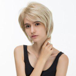 Short Side Bang Silky Straight Colormix Layered Synthetic Hair