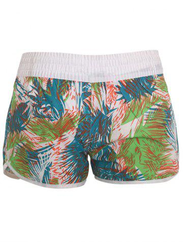 Unique Printed Dolphin Swim Shorts