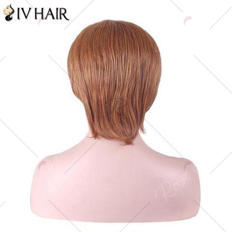 Trendy Siv Hair Short Inclined Bang Straight Human Hair Wig - AUBURN BROWN #30  Mobile