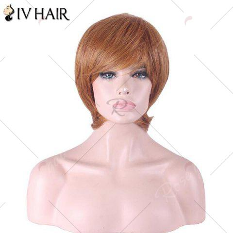 Sale Siv Hair Short Inclined Bang Straight Human Hair Wig - AUBURN BROWN #30  Mobile