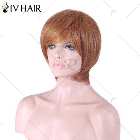New Siv Hair Short Inclined Bang Straight Human Hair Wig - AUBURN BROWN #30  Mobile