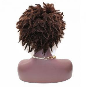Short Shaggy Afro Kinky Curly Lace Front Indienne Cheveux Humains Perruque - Multicolore