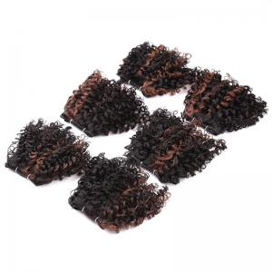 6PCS Short Fluffy Colormix Bloom Afro Curly Synthetic Hair Wefts -