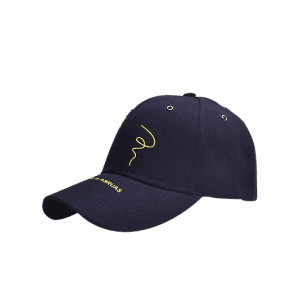 Paper Plane Pattern Letters Embroidery Baseball Hat
