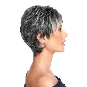 Short Side Bang Layered Shaggy Straight Colormix Synthetic Wig - BLACK AND GREY 8INCH