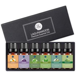 6Pcs Premium Therapeutic Natural Essential Oil Kit - Black - Xl