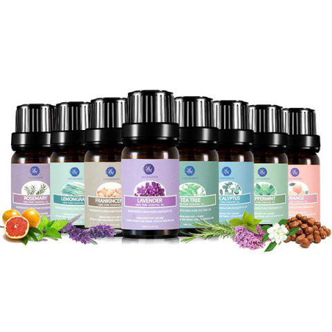 Shop 6Pcs Premium Therapeutic Natural Essential Oil Kit - BLACK  Mobile