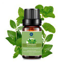 10ml Premium Therapeutic Peppermint Aromatherapy Essential Oil - GREEN