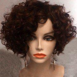 Short Inclined Bang Afro Fluffy Curly Synthetic Wig - BROWN